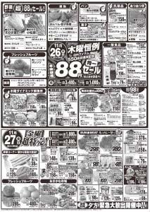 nagarasamasoharasama1125-b
